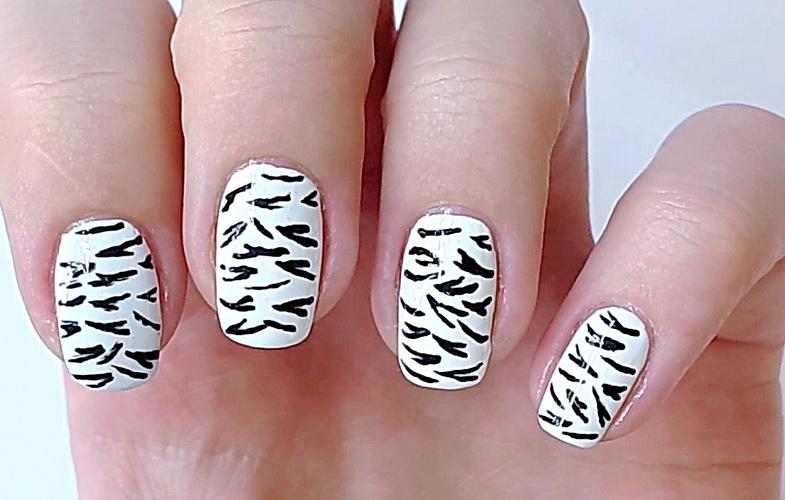 Manucure - Zebra